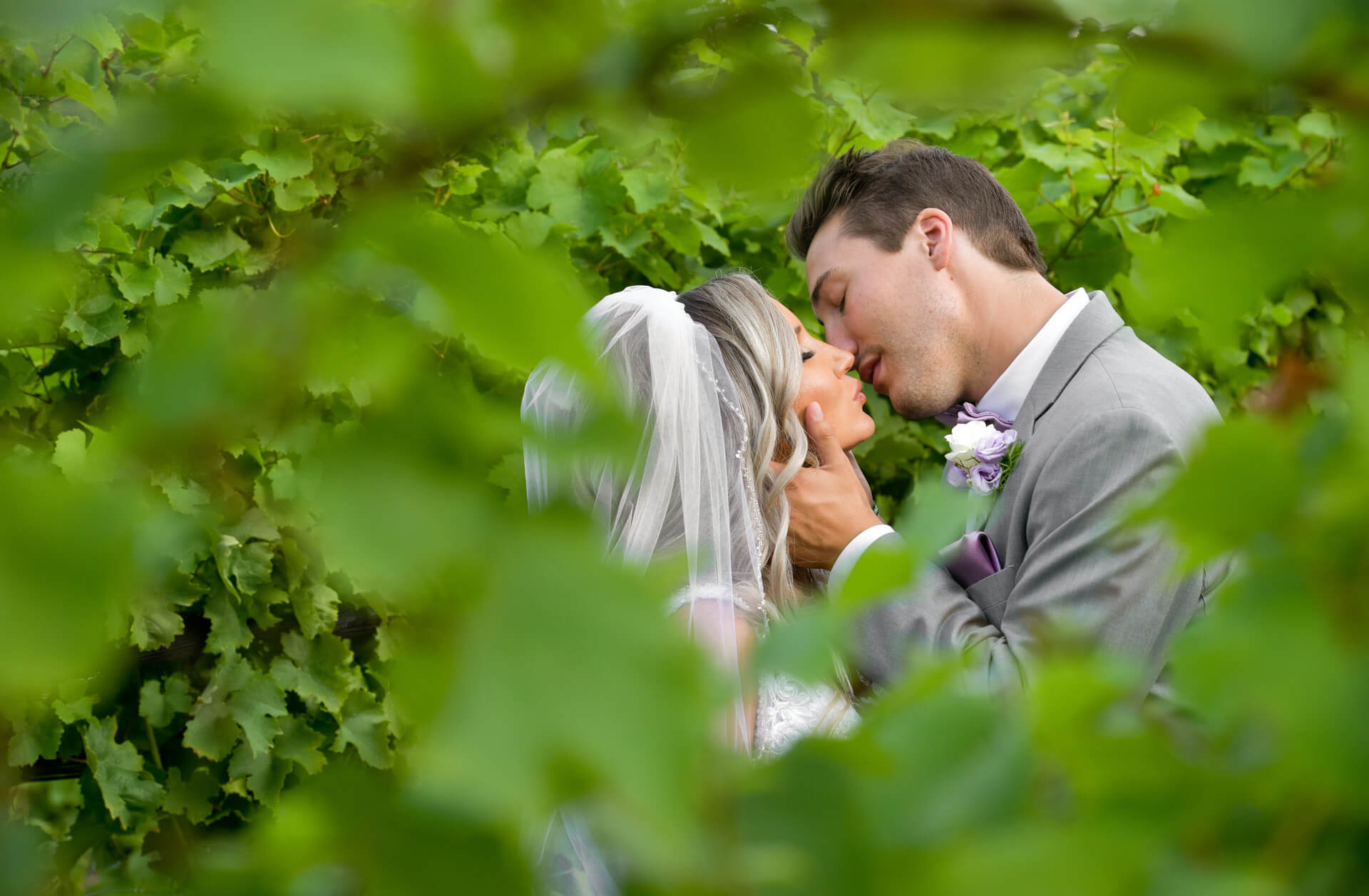 The bride and groom kiss in the vineyards after moving their wedding to a destination wedding in Traverse City Michigan during the pandemic.