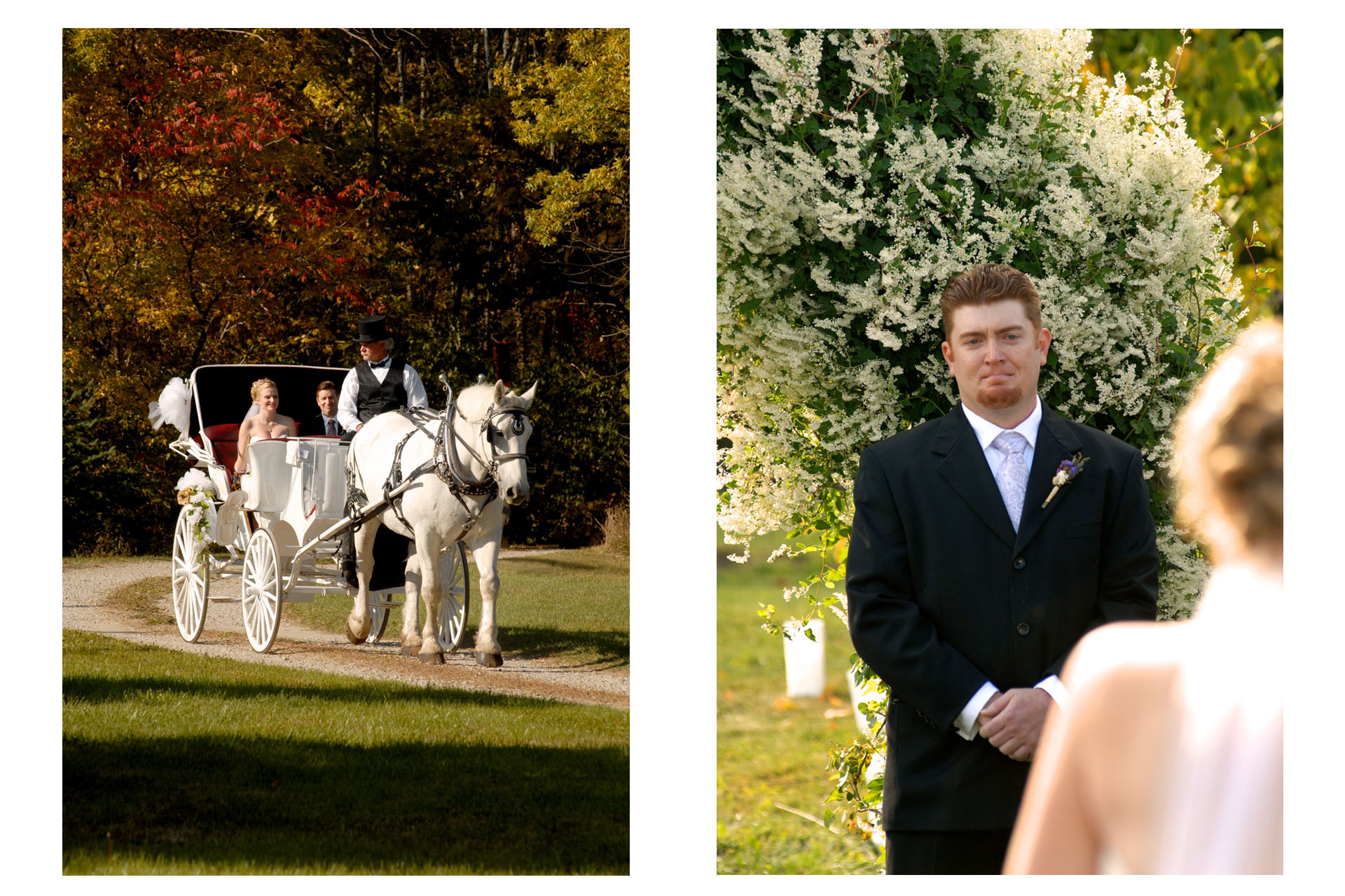 Favorite Michigan backyard wedding photography features photojournalist photos of the bride and her father pulling up in a horse and carriage for their wedding in metro Detroit, Michigan featuring their lovely backyard garden wedding in fall..
