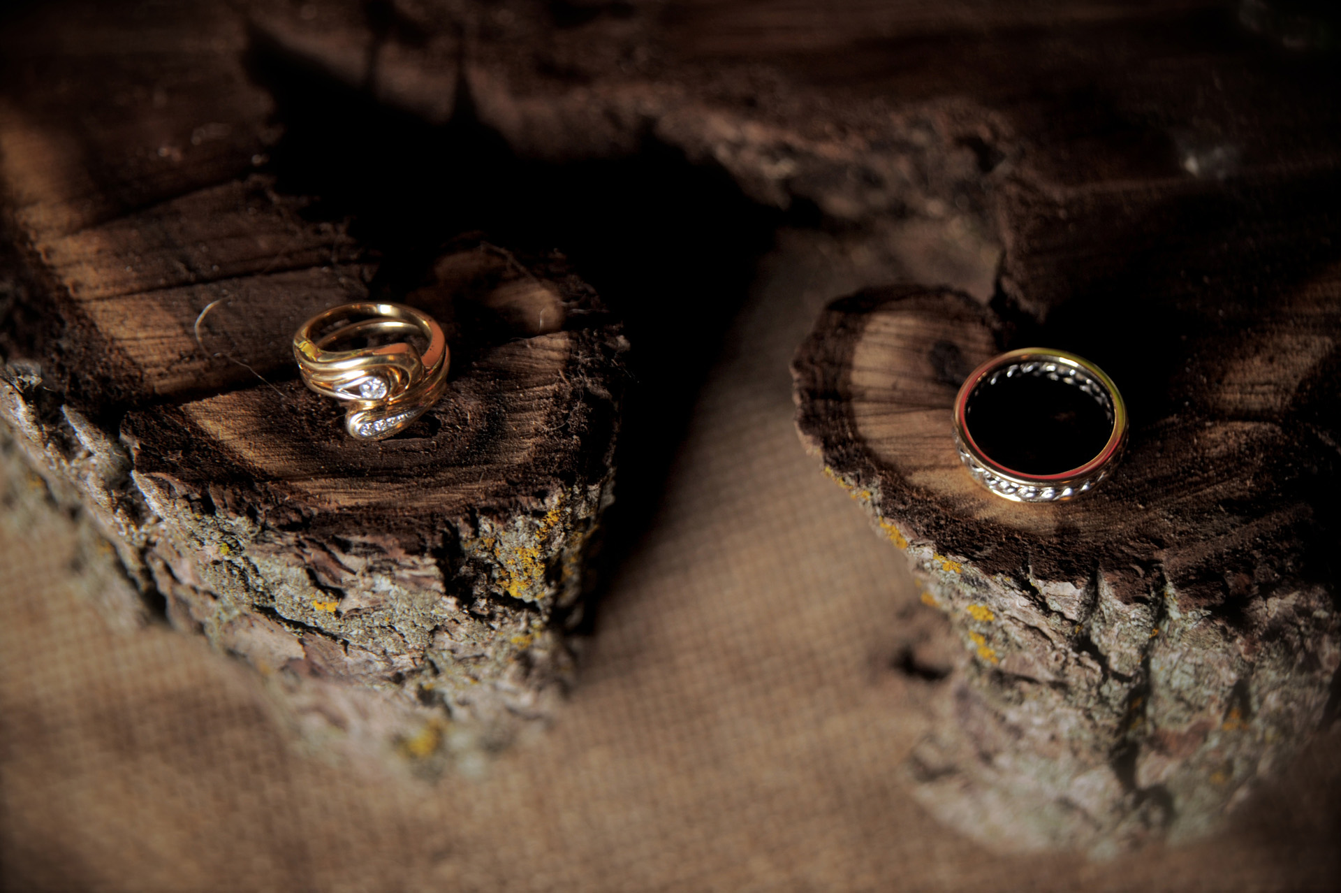 Michigan country wedding wedding photographer's photo of the wedding couple's rings on rings of wood cut at their farm at their Michigan country wedding.