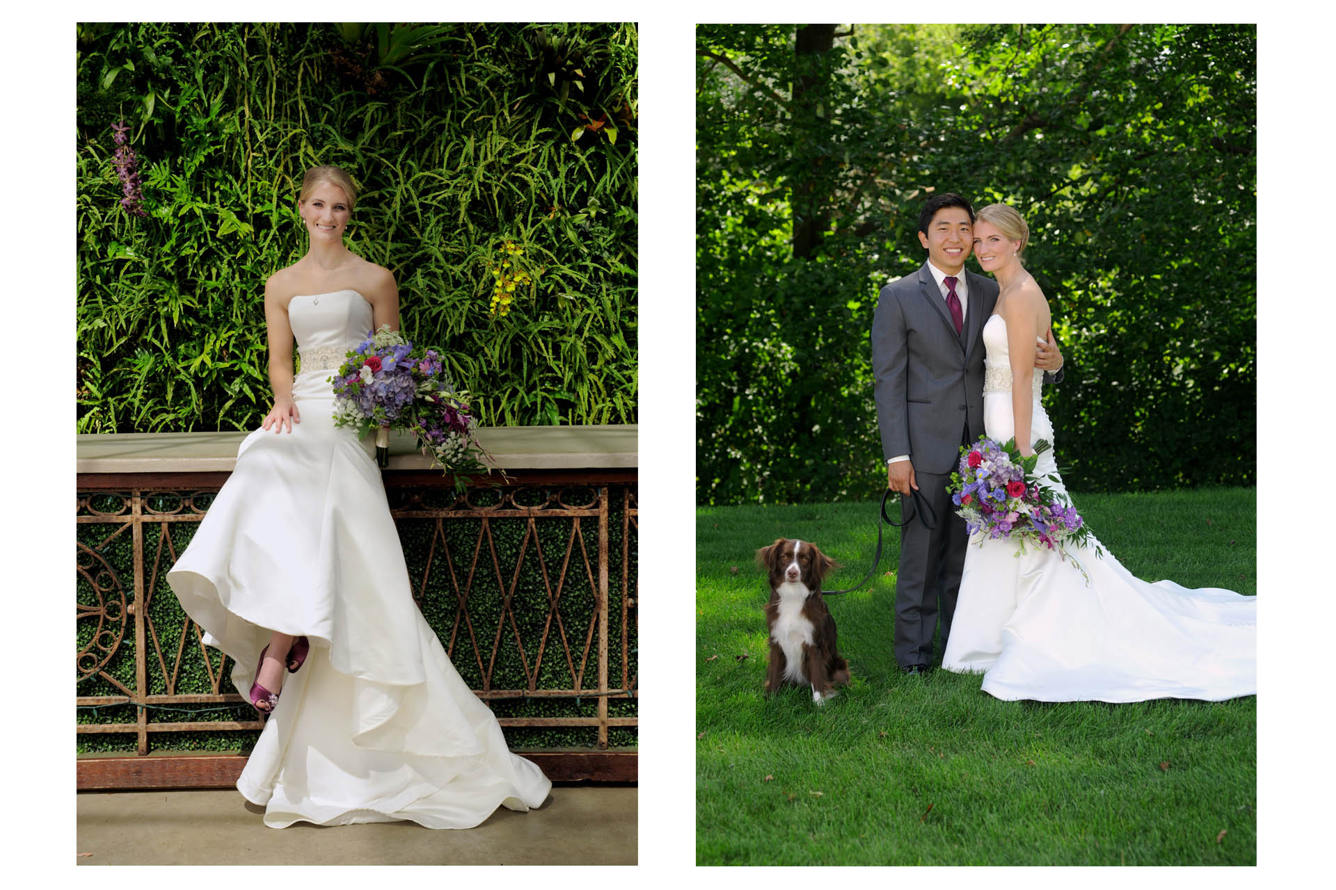 West Bloomfield, Michigan wedding photographer shows the bride on the bar at the Planterra Conservatory in West Bloomfield, Michigan along with photos of the bride and groom with their dog.