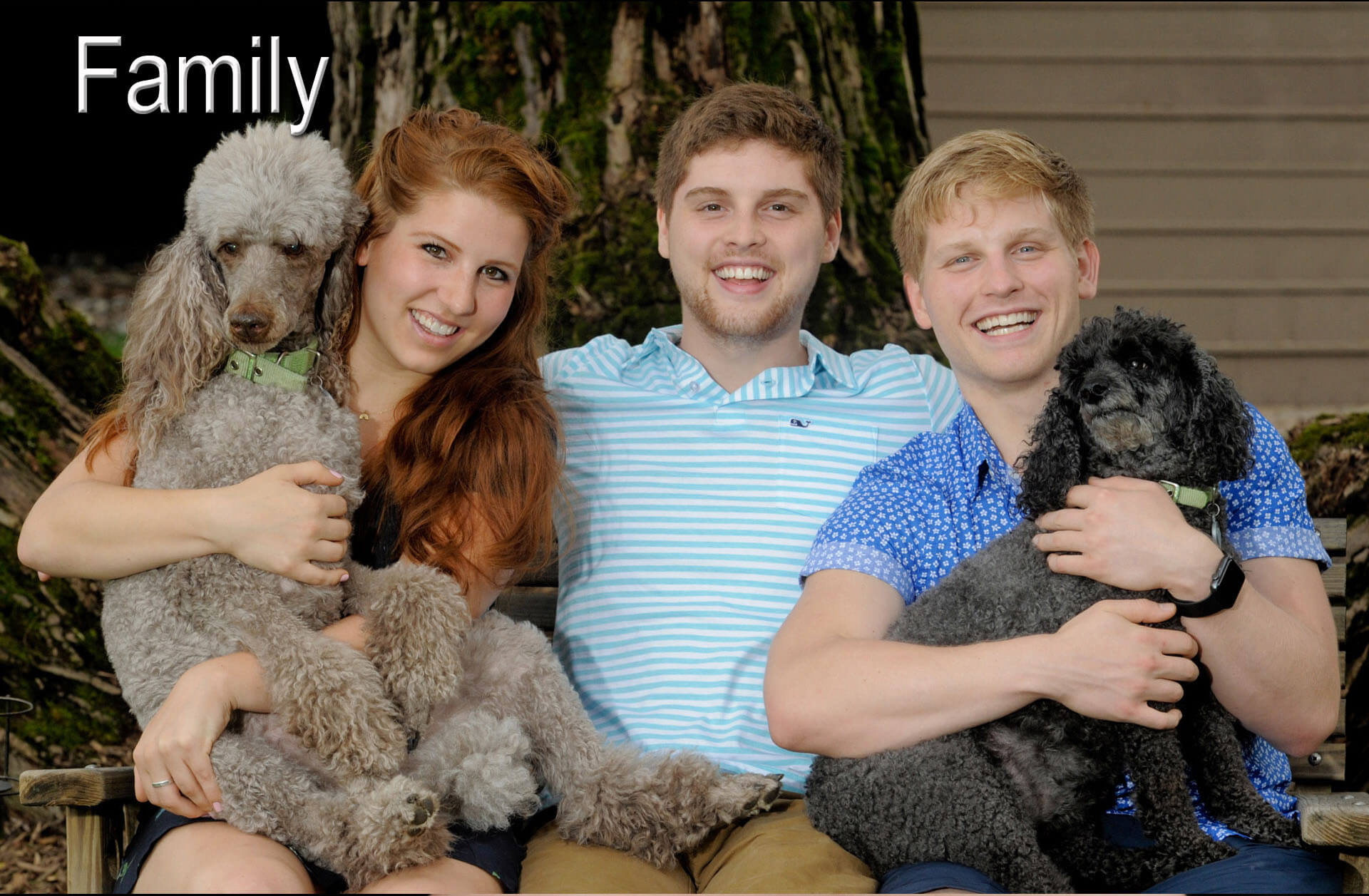 A Troy, Michigan family poses with their beloved poodles.