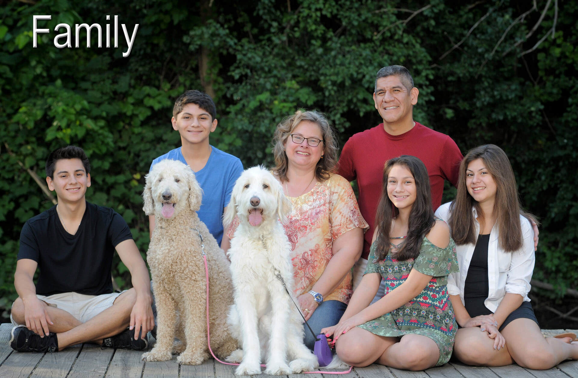 A Troy, Michigan family poses with their dogs in Auburn Hills, Michigan during their family photography session.