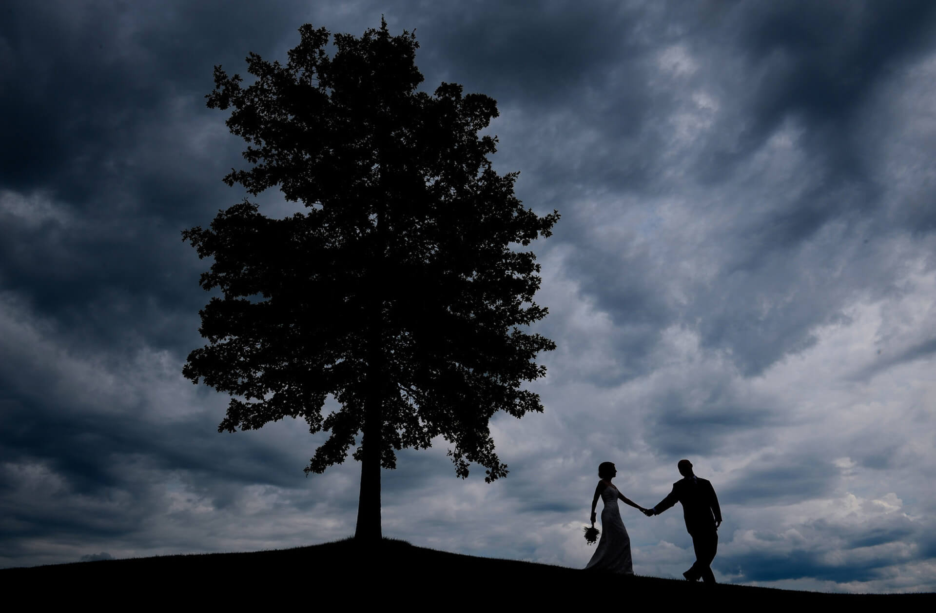 A stormy day made for a cool, dramatic wedding portrait of the bride and groom at the Coyote Preserve in metro Detroit, Michigan.