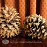 Pine cone wedding decorations