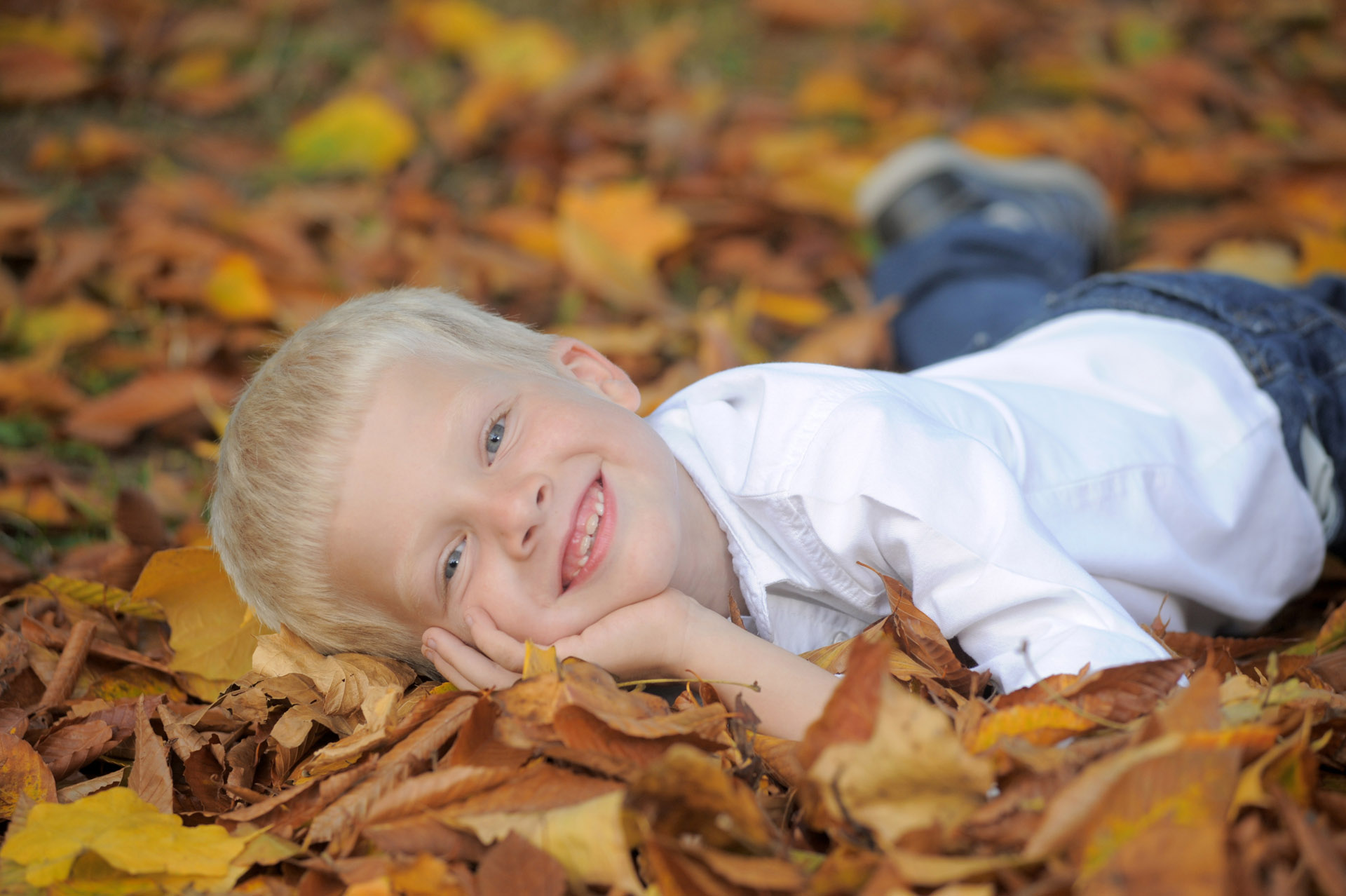 Best Detroit children photographer's photos of a young boy playing in the leaves in the metro Detroit, Michigan area.